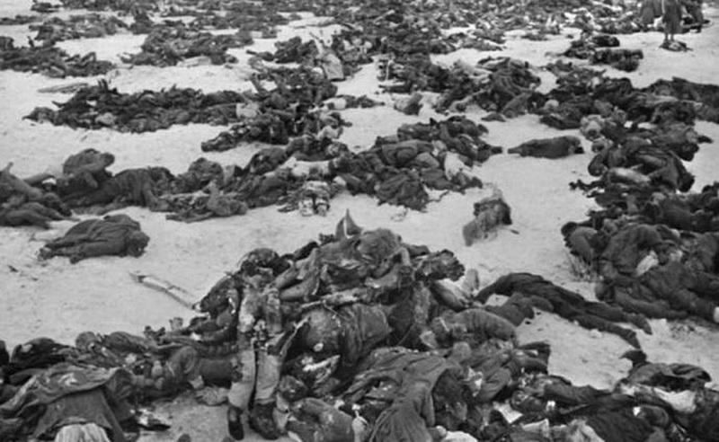 фото убитых солдат вермахта